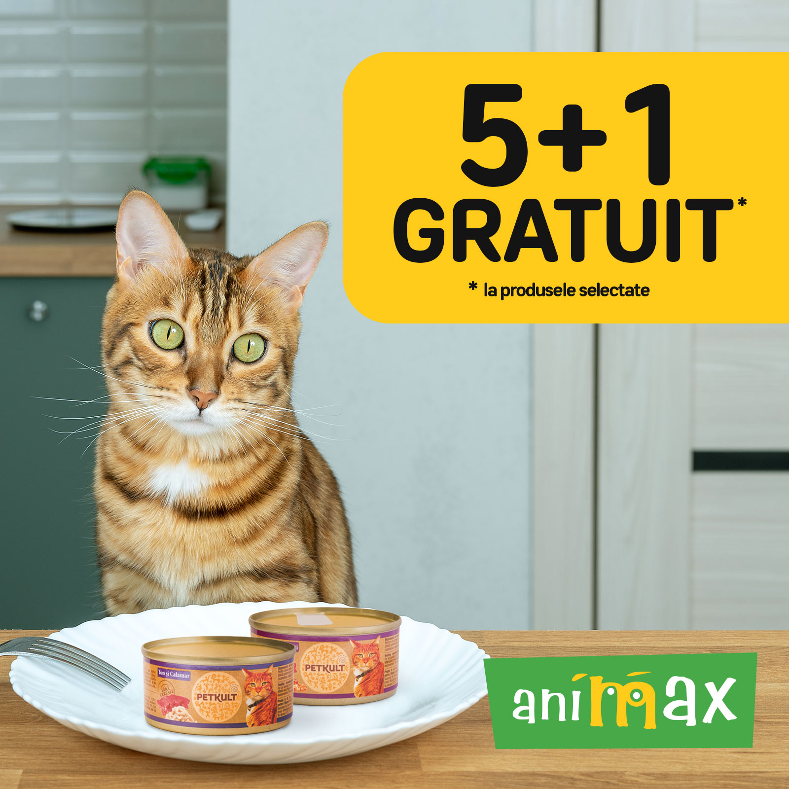 SUPER PROMOȚIE 5+1 la ANIMAX!